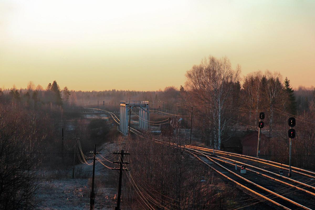 Вид от станции Мста на перегон, в сторону станции Дремуха