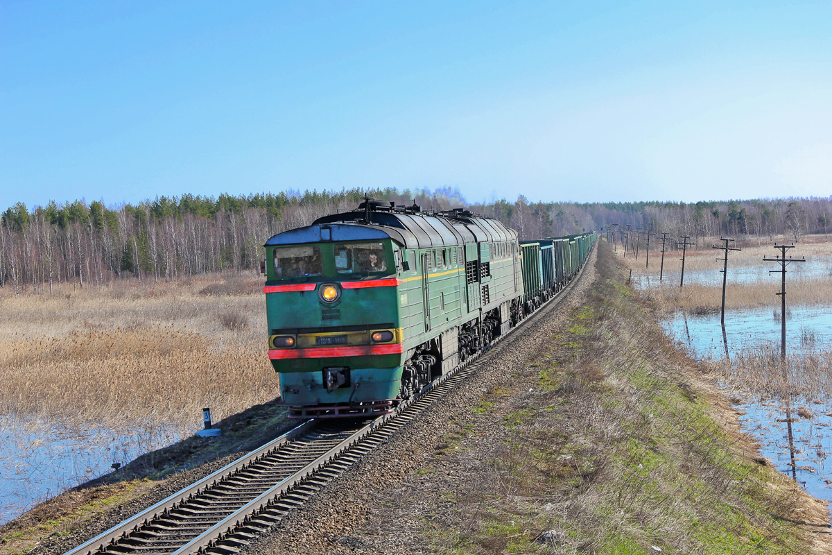 Тепловоз 2ТЭ116-262 с грузовым поездом, перегон Кафтино - Платищенка