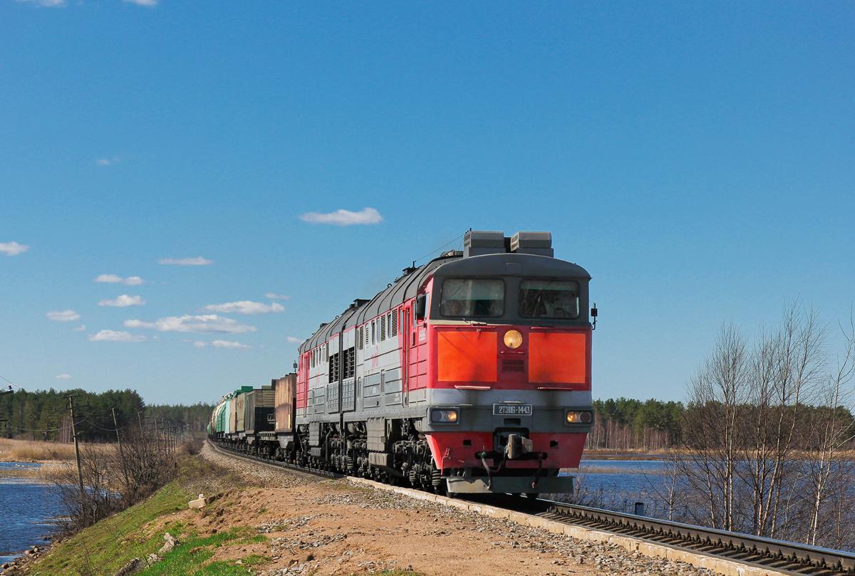 Тепловоз 2ТЭ116-1443 с грузовым поездом на перегоне Платищенка - Кафтино