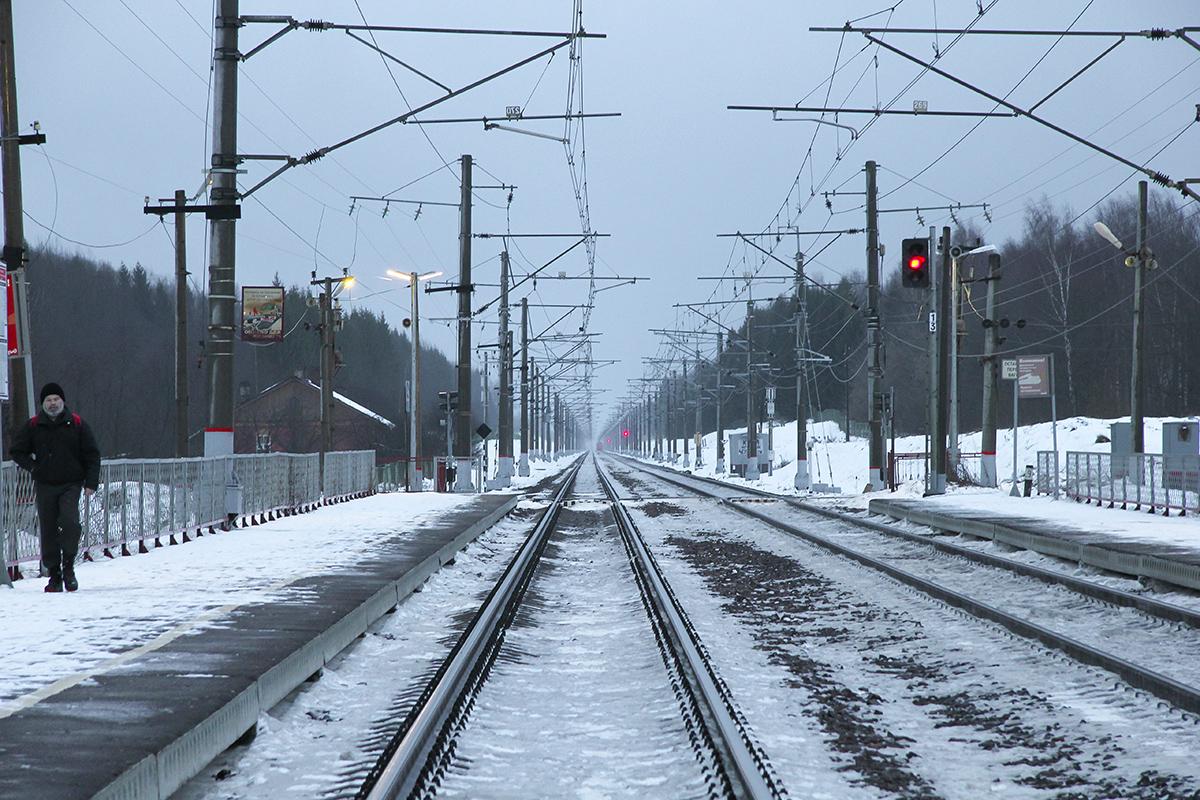 Вид от платформы Левошинка в сторону платформы Бухаловский переезд