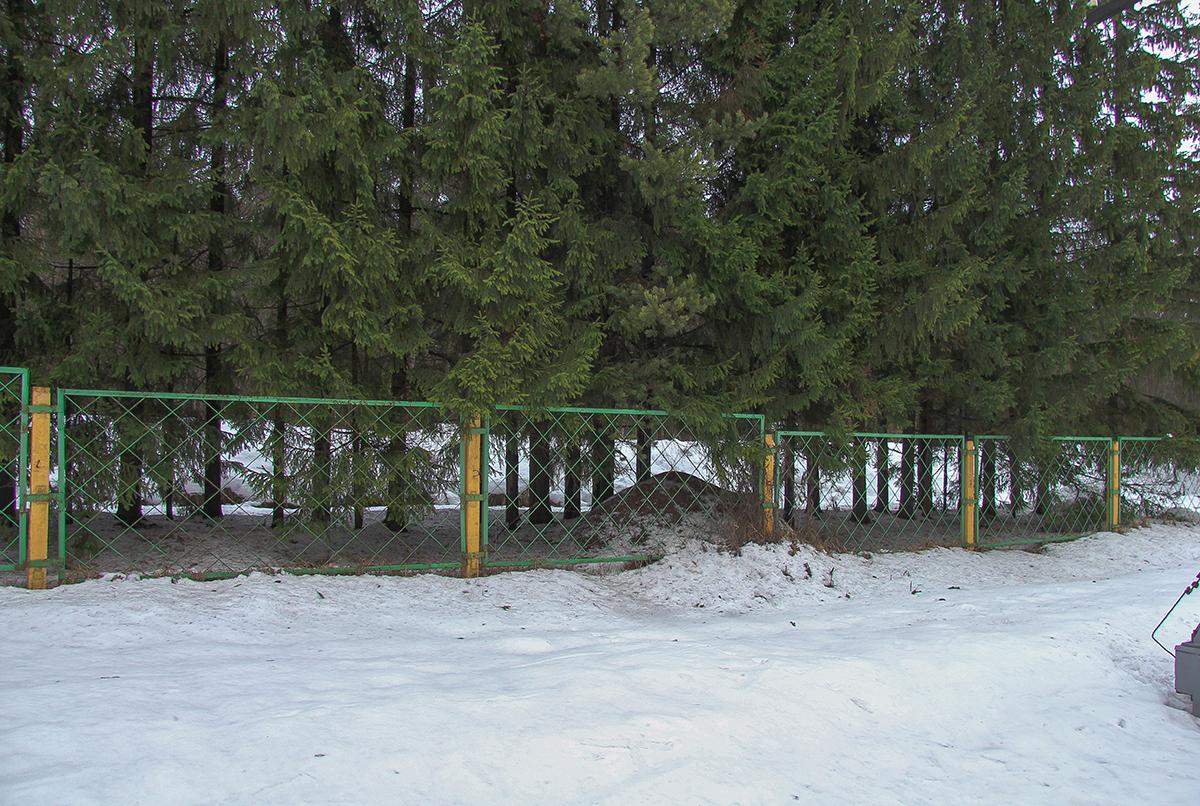 Муравейник близ о.п. Бухаловский переезд