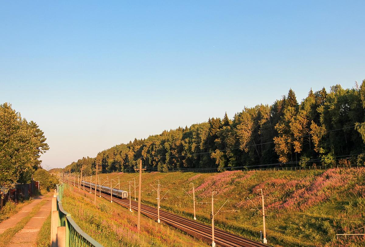 Поезд дальнего следования на участке Фроловское - Покровка