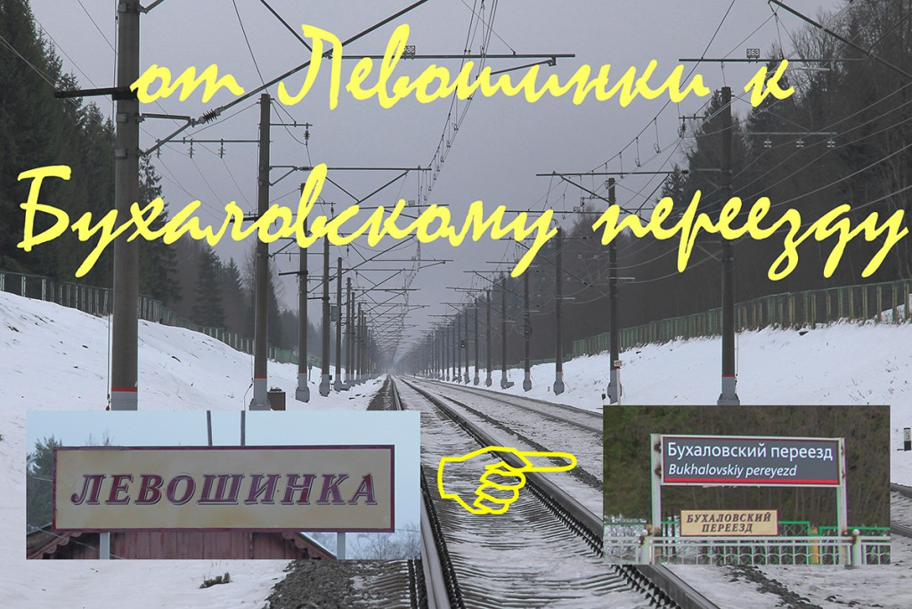платформа Левошинка, платформа Бухаловский переезд
