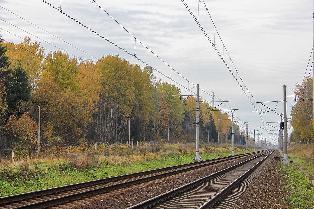 Вид от платформы Черничная в сторону станции Завидово