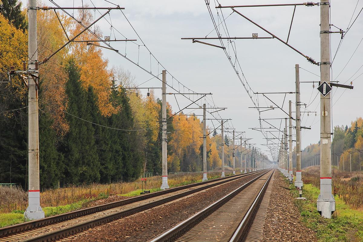 Вид от платформы Черничная в сторону станции Решетниково