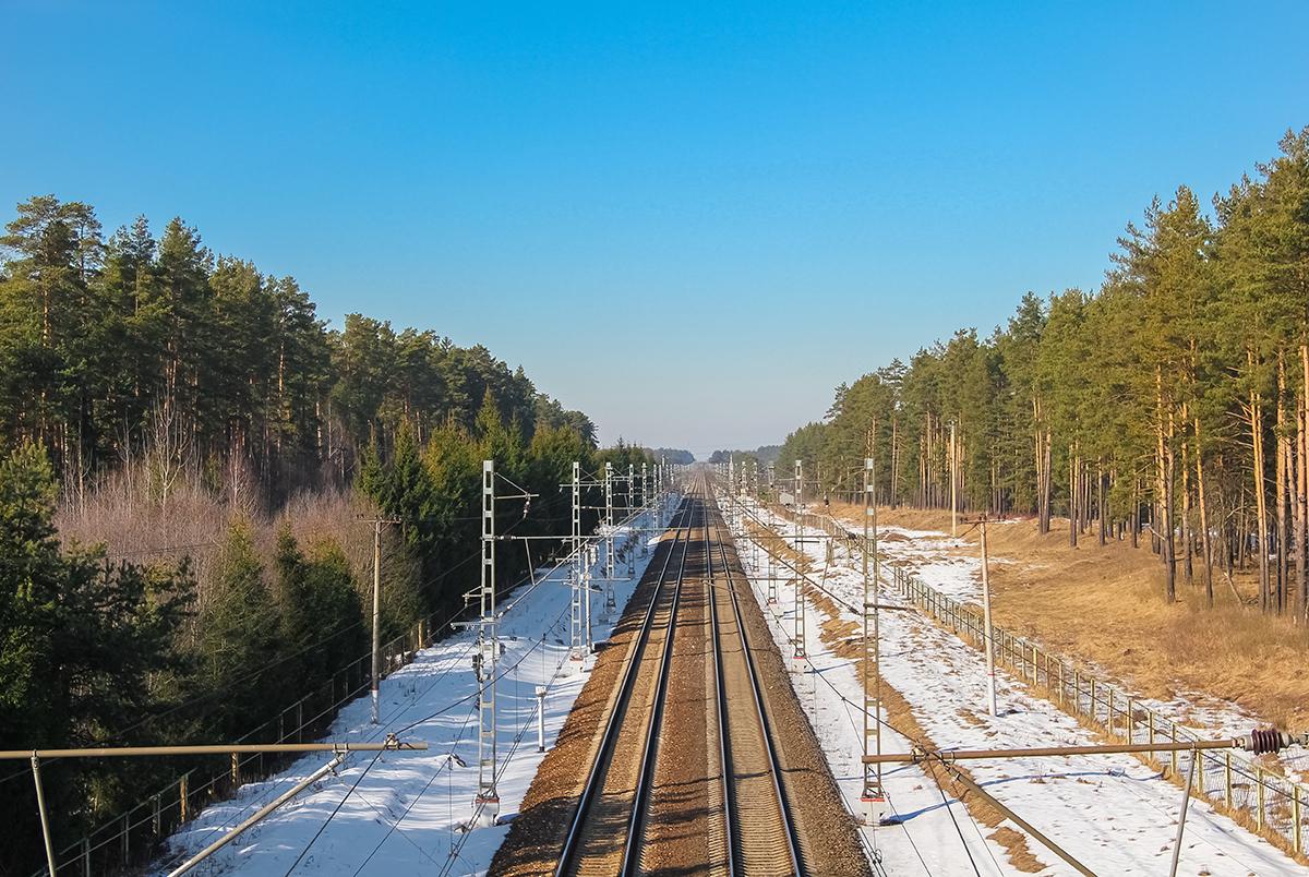 Вид от платформы Санаторий в сторону Санкт-Петербурга
