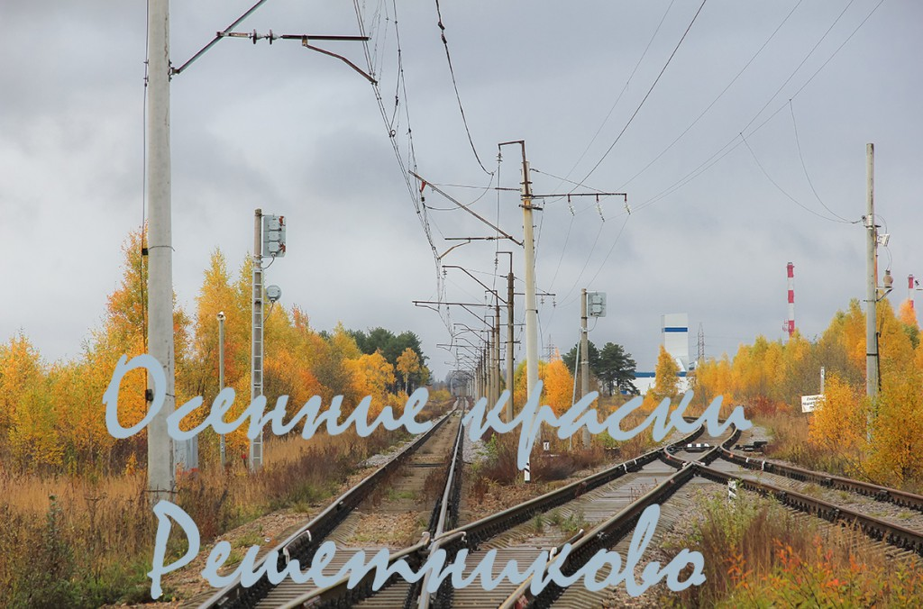 Станция Решетниково