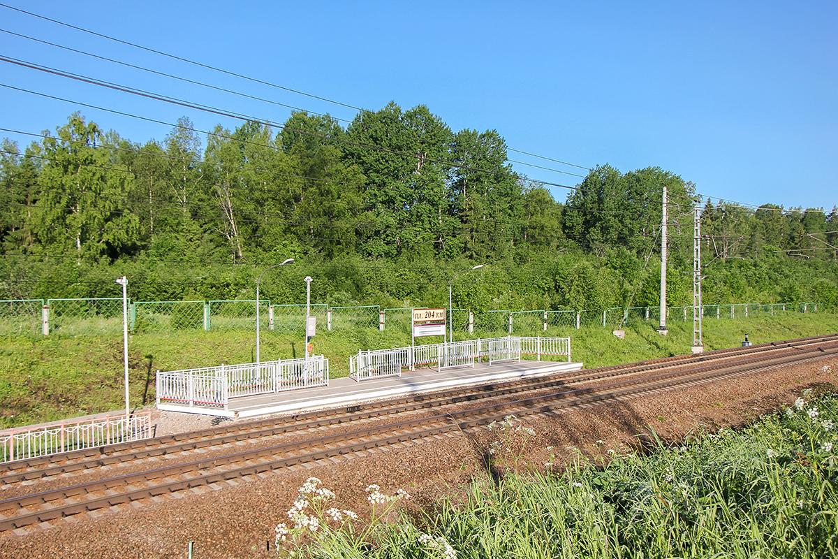 Платформа 204 км. «На Окуловку», перегон Мстинский мост — Торбино