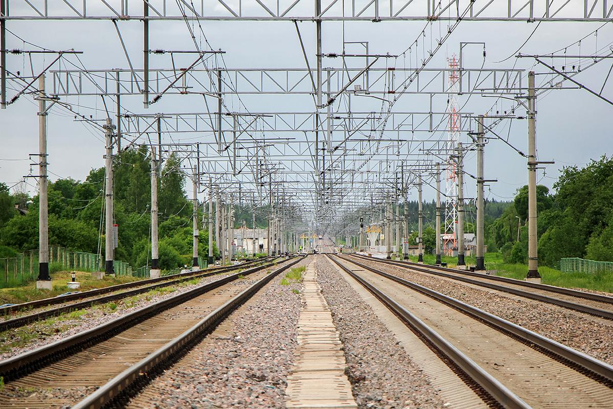 Вид на станцию Торбино со стороны Москвы