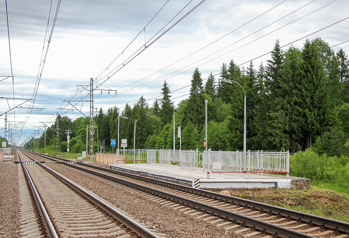 Платформа 220 км. «На Окуловку», перегон Торбино - Боровёнка
