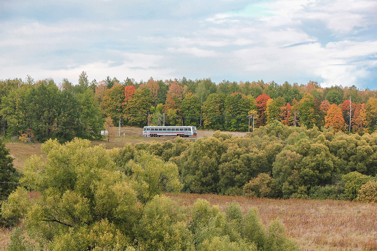 Рельсовый автобус РА1-0019 на перегоне Павелец-I-Тульский - Мшанка