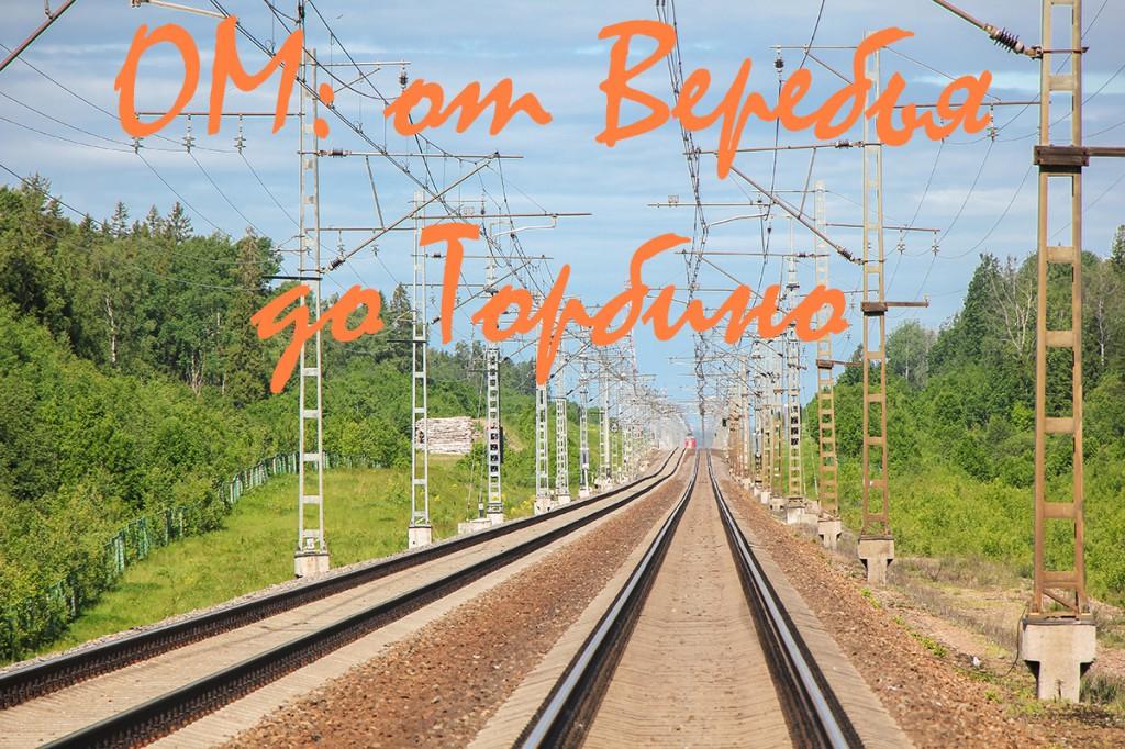 Перегон станция Веребье - станция Торбино