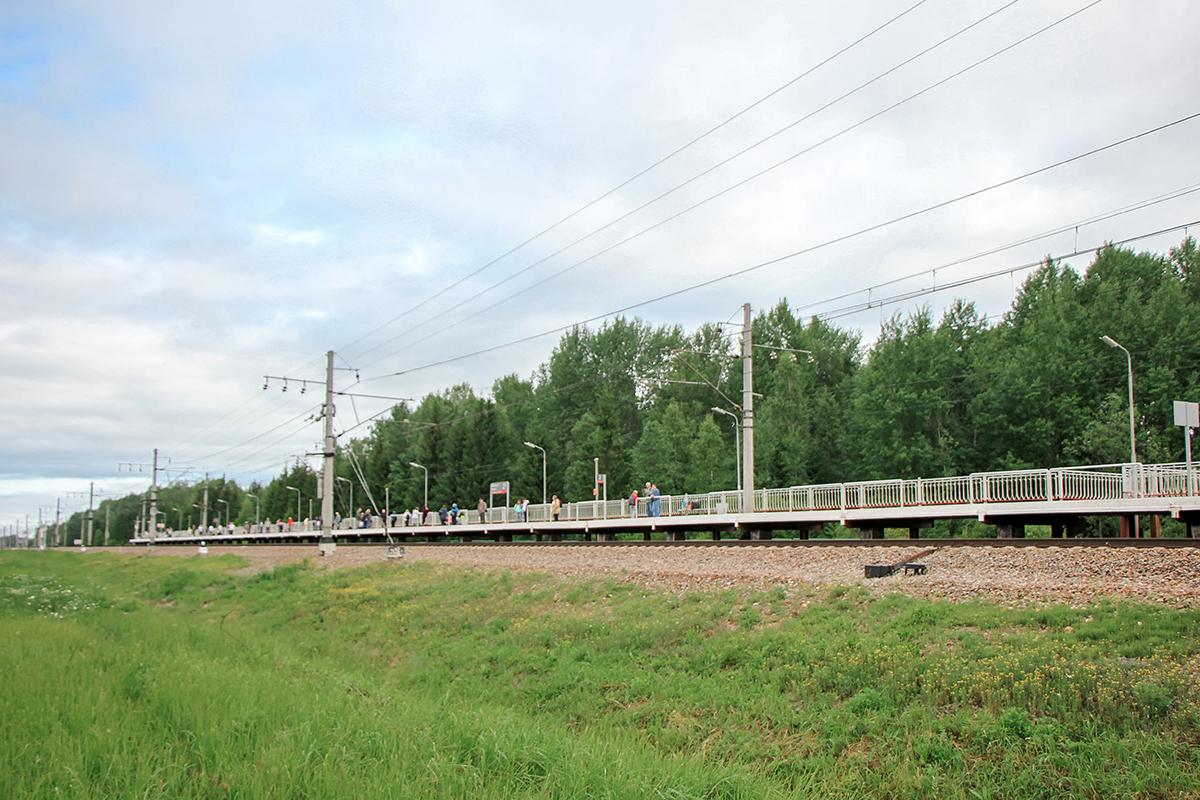 Платформа Бабино-II «На Санкт-Петербург», перегон Торфяное - Любань