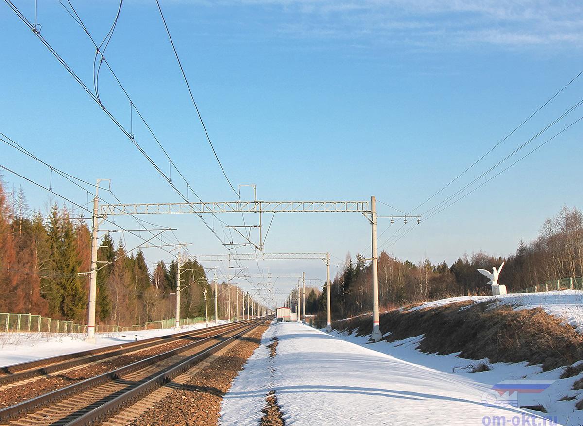 Вид от платформы Бочановка в сторону станции Бушевец