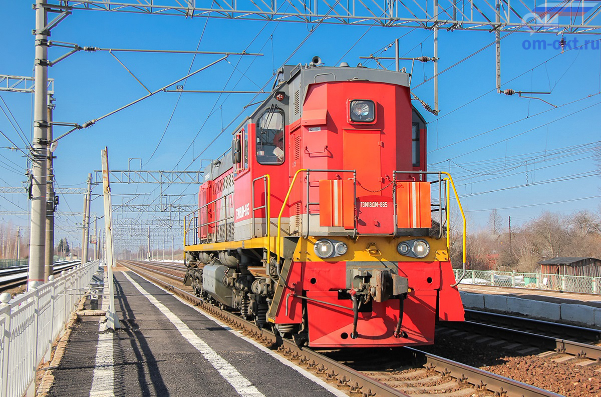 Тепловоз ТЭМ18ДМ-865 проследует станцию Бушевец