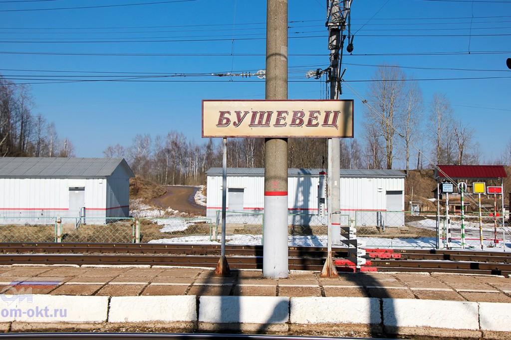 Станция Бушевец