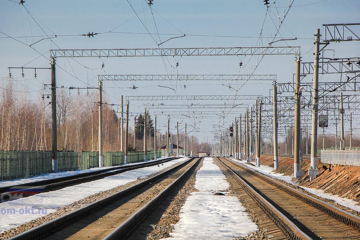 Грузовые пути станции Бушевец, вид в строну станции Бологое-Московское