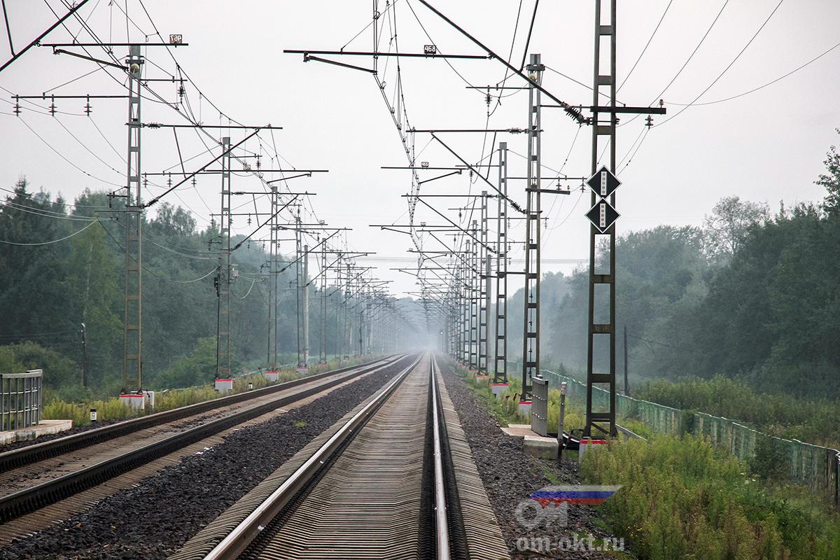 Вид от платформы Трубино в сторону платформы Крючково