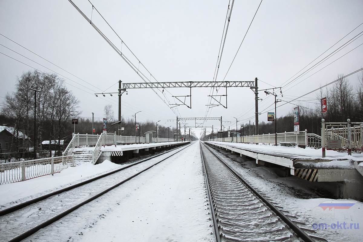 Платформа Волхово, вид в сторону станции Чудово-Московское