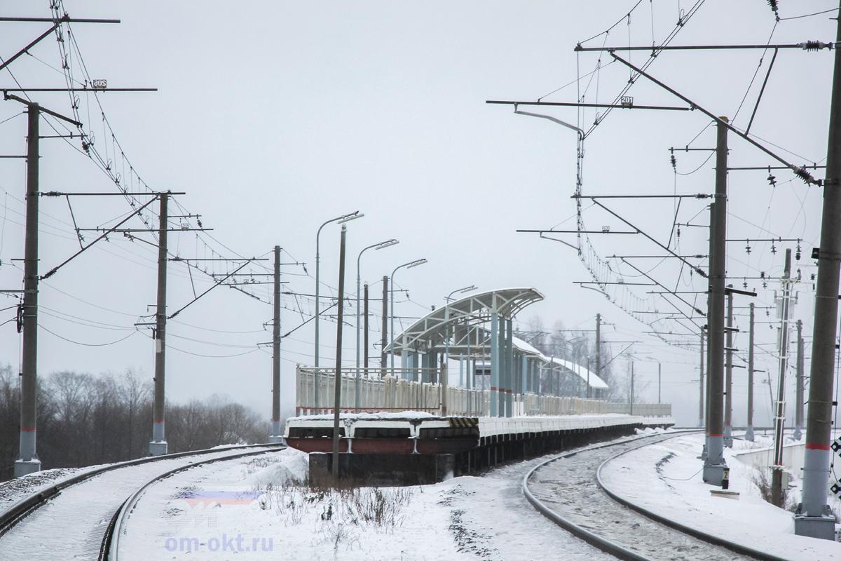 Вид на платформу Волхов Мост