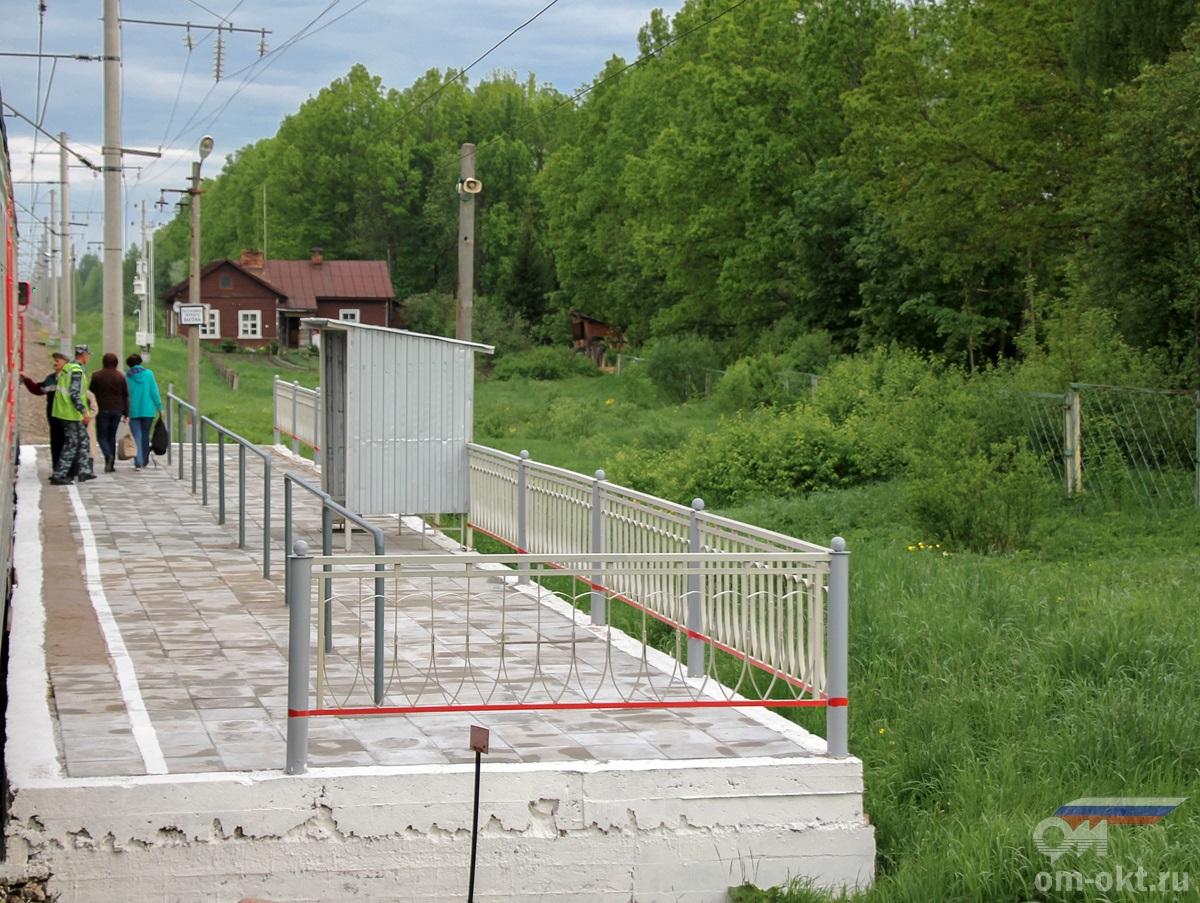 Платформа 310 км (Гузятино) «Из Бологое»