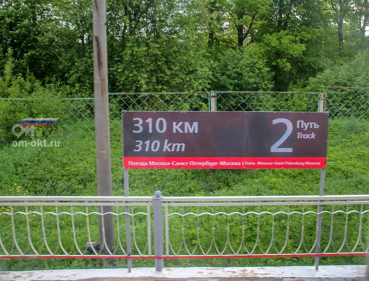 Табличка на платформе 310 км (Гузятино)