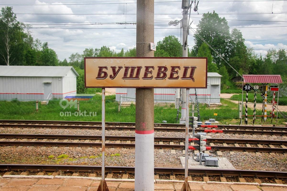 Табличка на платформе станции Бушевец