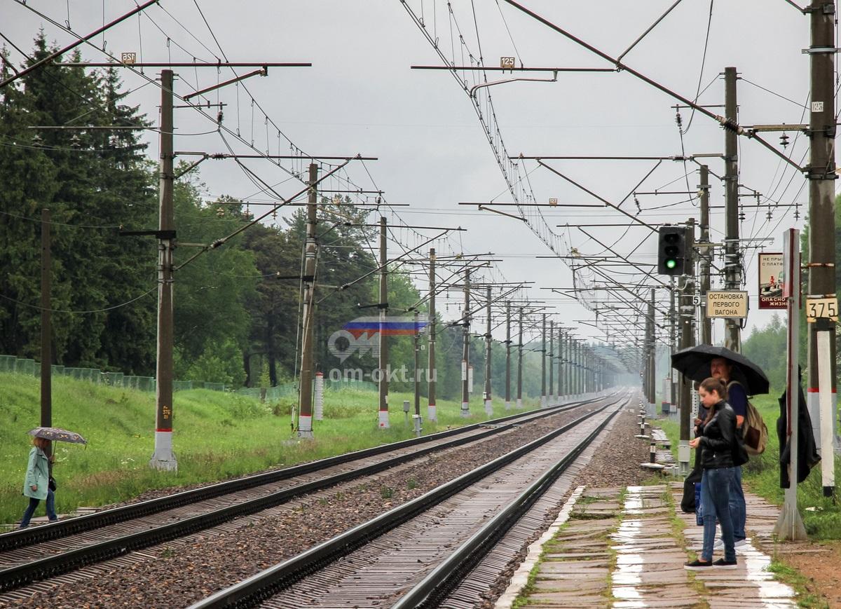 Вид от платформы Терелесовская в сторону станции Осеченка