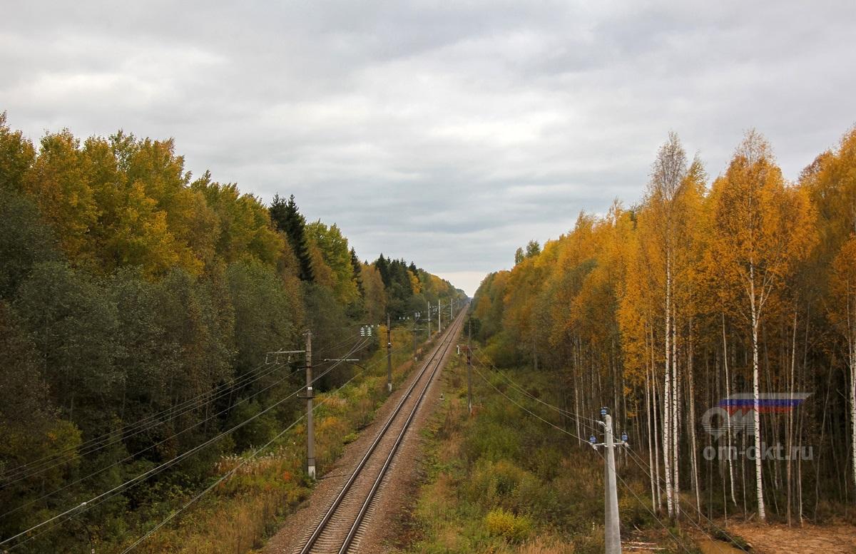 Вид с путепровода трассы М11 в сторону Торжка