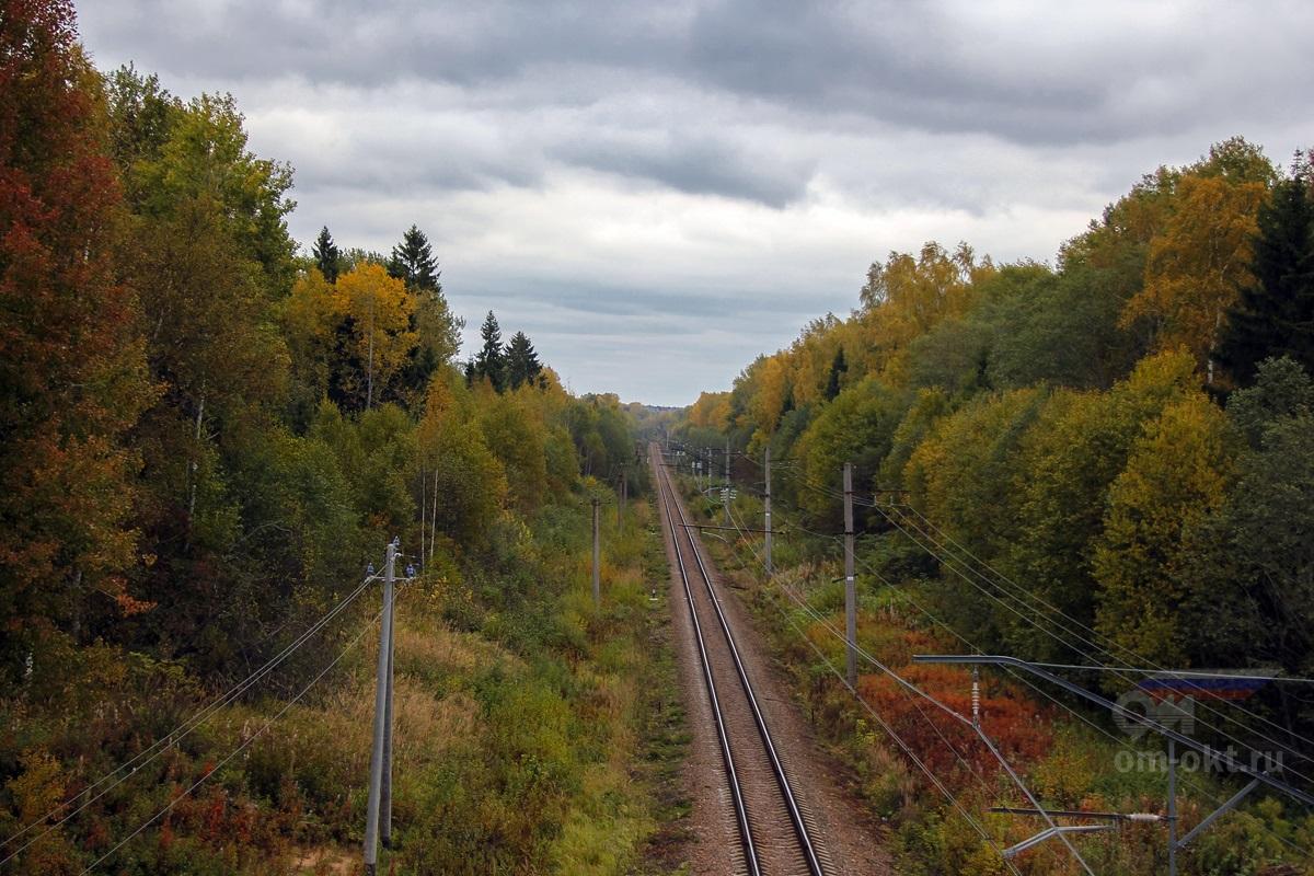 Вид с путепровода трассы М11 в сторону Терешкино