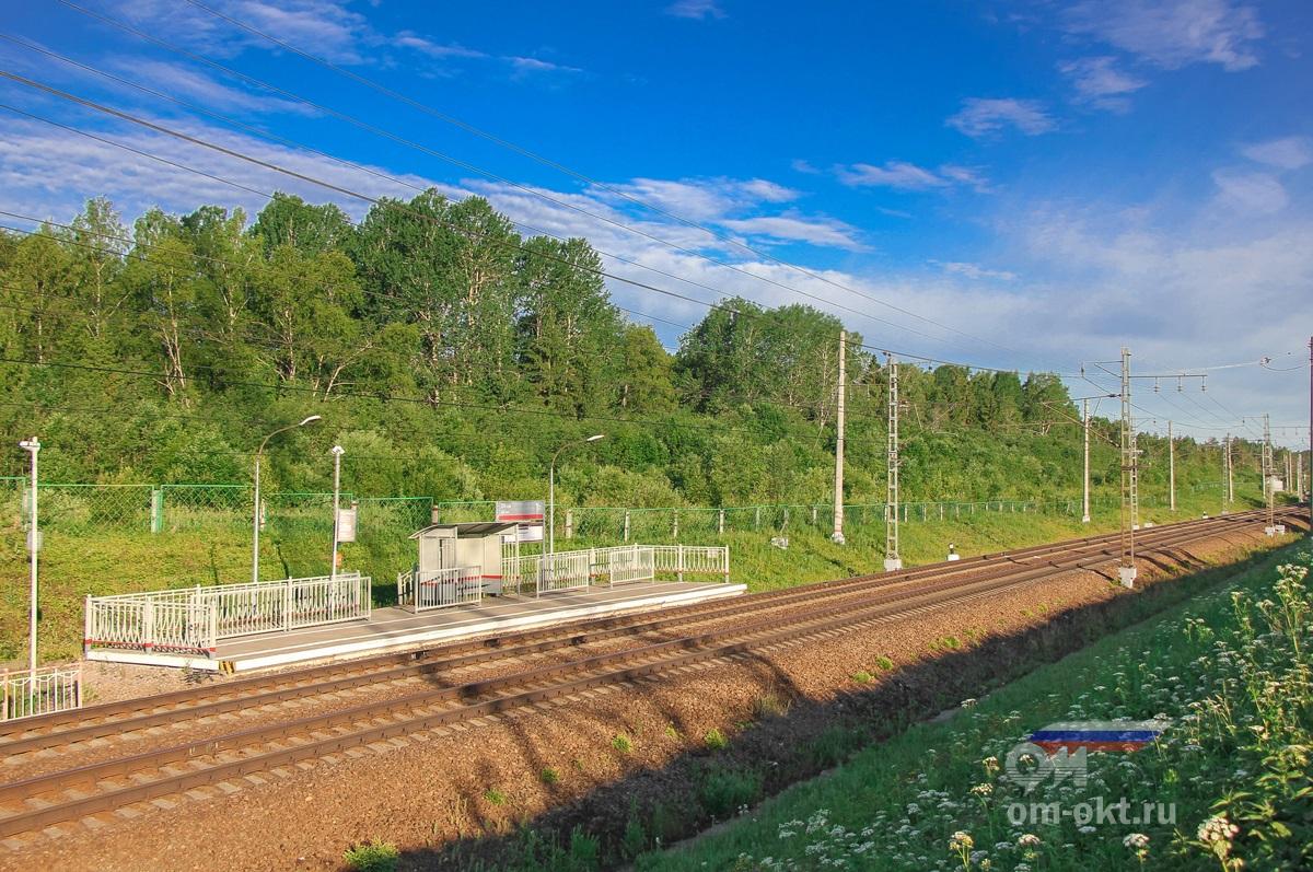 Платформа 204 км., перегон Мстинский мост — Торбино