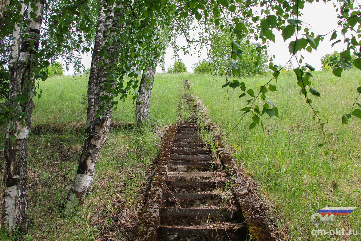 Лестница на насыпи Веребьинского обхода