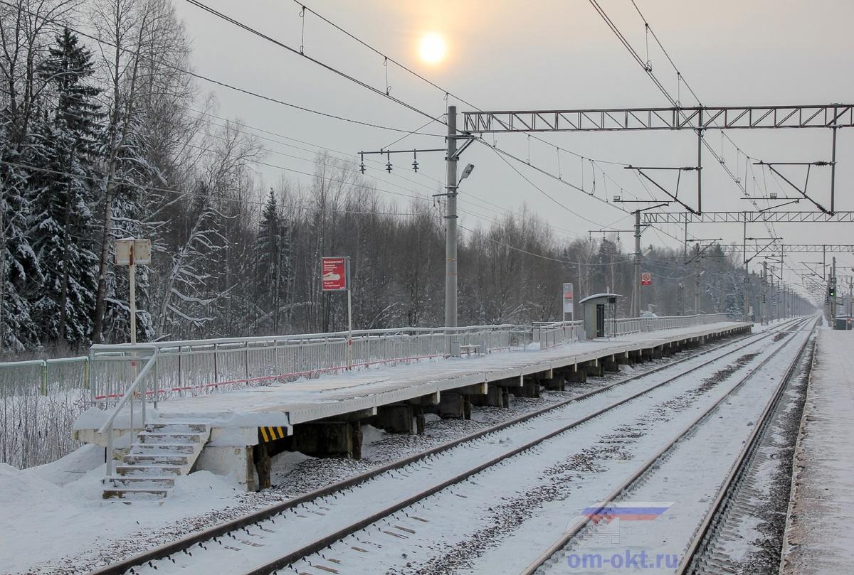 Платформа Черничная, «из Москвы», вид в сторону Решетниково