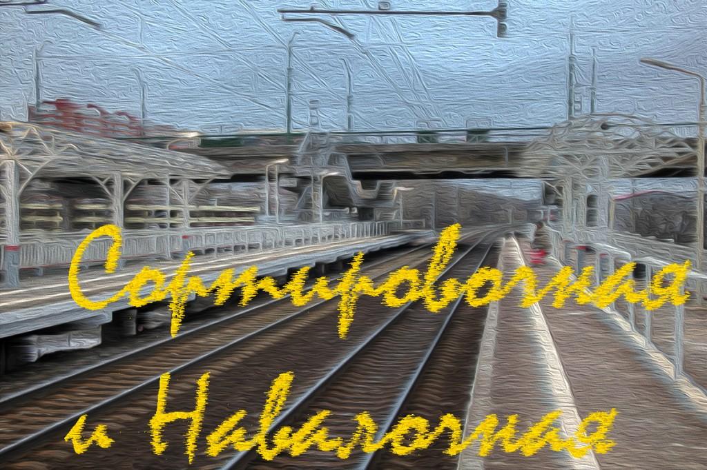 Санкт-Петербург-Сортировочный-Московский и платформы Сортировочная и Навалочная
