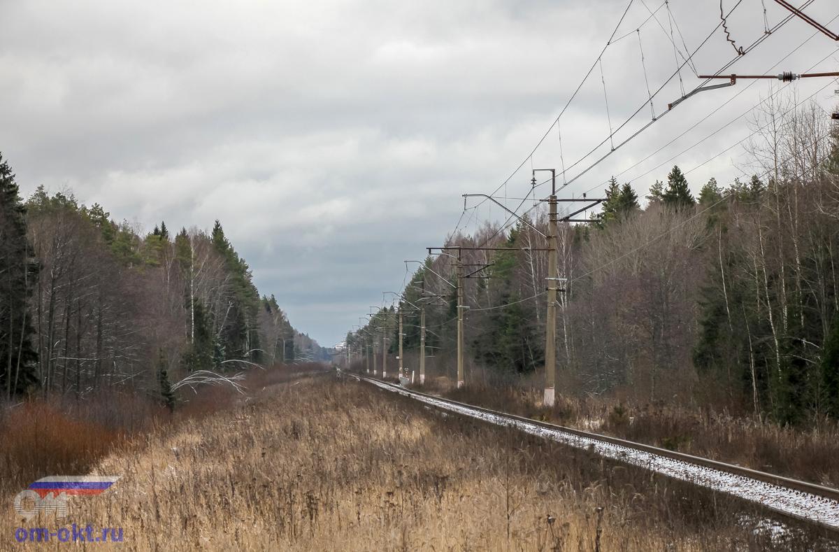 Вид от платформы Донховка в строну станции Конаково ГРЭС