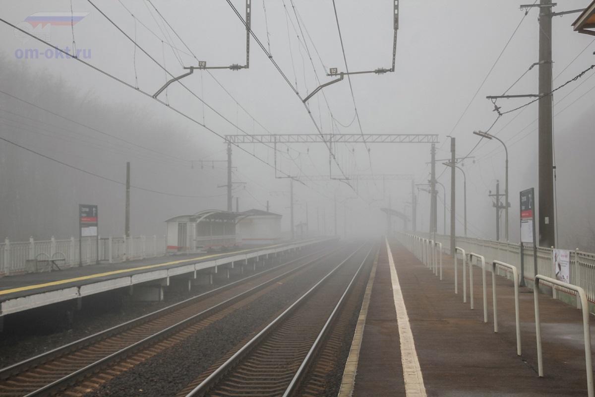 Вид на остановочный пункт Стреглово со стороны платформы Фроловское