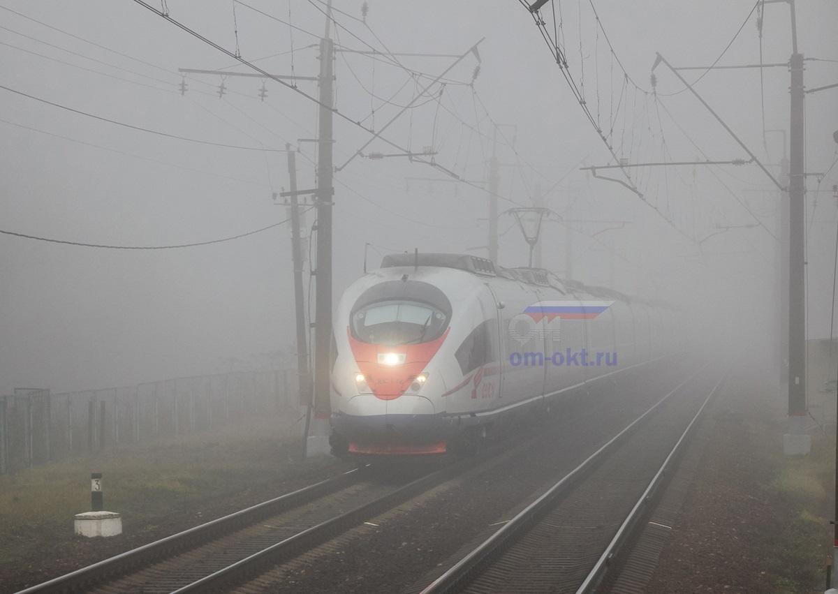 Электропоезд ЭВС1-14 «Сапсан» проследует платформу Фроловское, перегон Клин - Подсолнечная