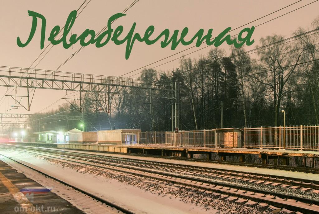 Платформа Левобережная, Левобережье