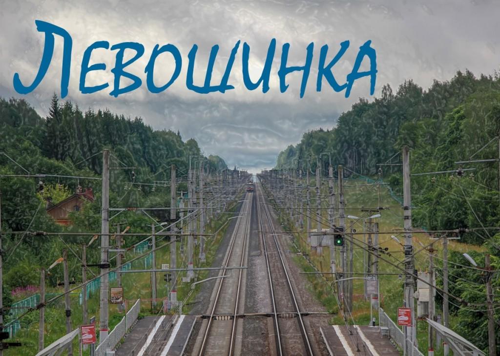 остановочный пункт Левошинка, Левошинка