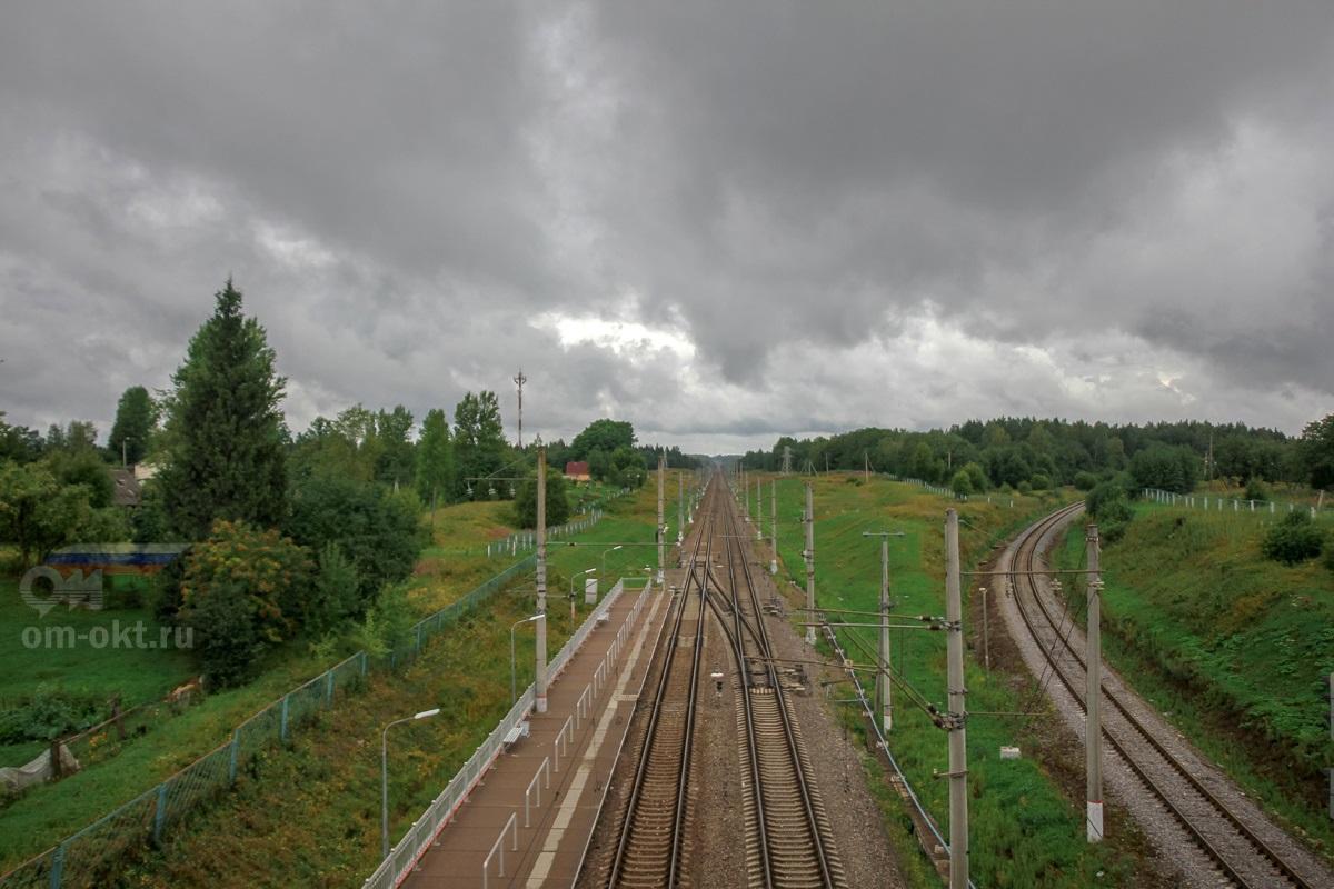 Вид от станции Угловка в сторону Окуловки