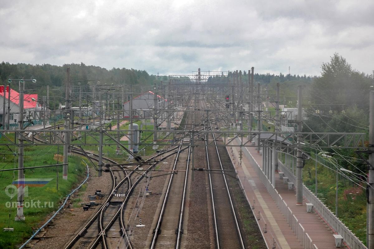 Вид от станции Угловка в сторону Алёшинки