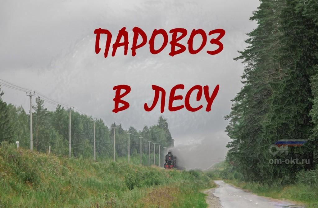 паровоз на линии Бологое - Осташков
