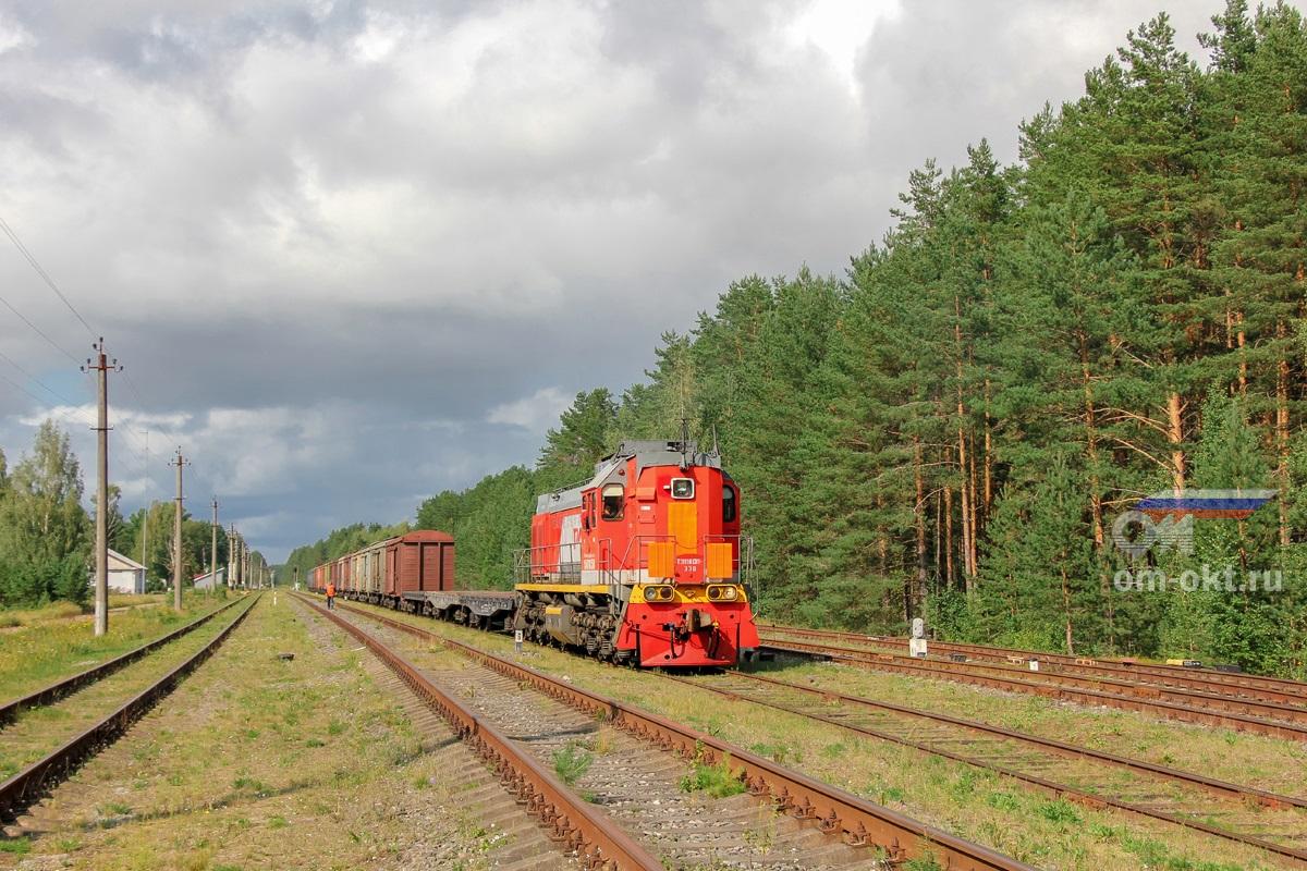 Тепловоз ТЭМ18ДМ-330 с грузовыми вагонами на станции Котово