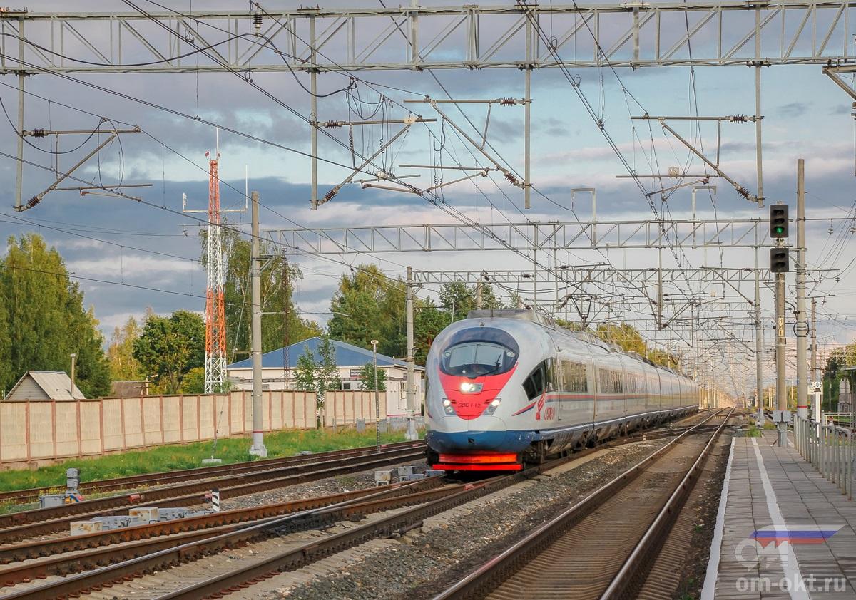 Электропоезд ЭВС1-12 «Сапсан» проследует станцию Березайка