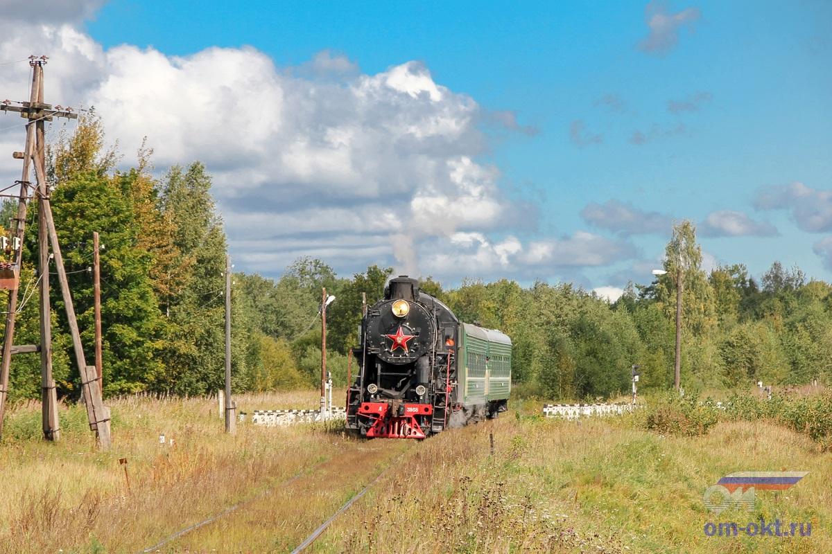 Паровоз Л-3958 остановочный пункт Шлина
